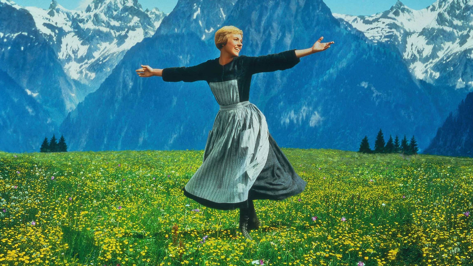 Image result for julie andrews sound of music paintings