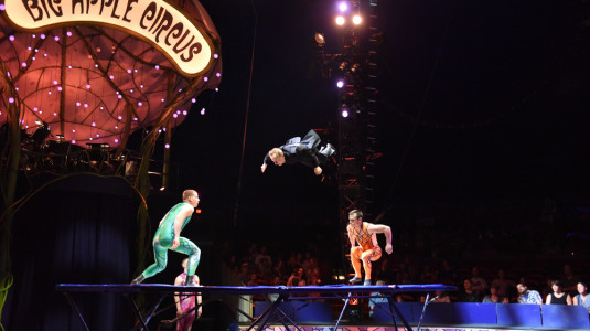 Performers at the Big Apple Circus.