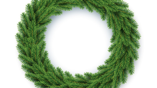 A bare green wreath over a white background.
