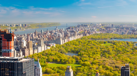 An aerial view of Central Park on a sunny day.