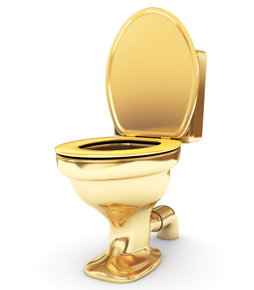 gold toilet. An image of a gold toilet  Guggenheim Museum Presents A Solid Gold Toilet Cultivating Culture