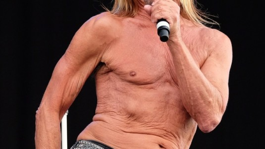 A picture of Iggy Pop.