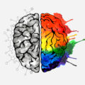 An image of a brain, half of which is shown in black and white and the other half of which is rainbow-colored.