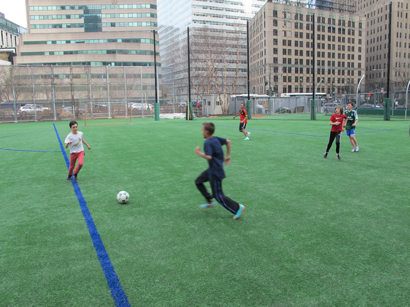Battery Park City Authority Completes Field Restoration