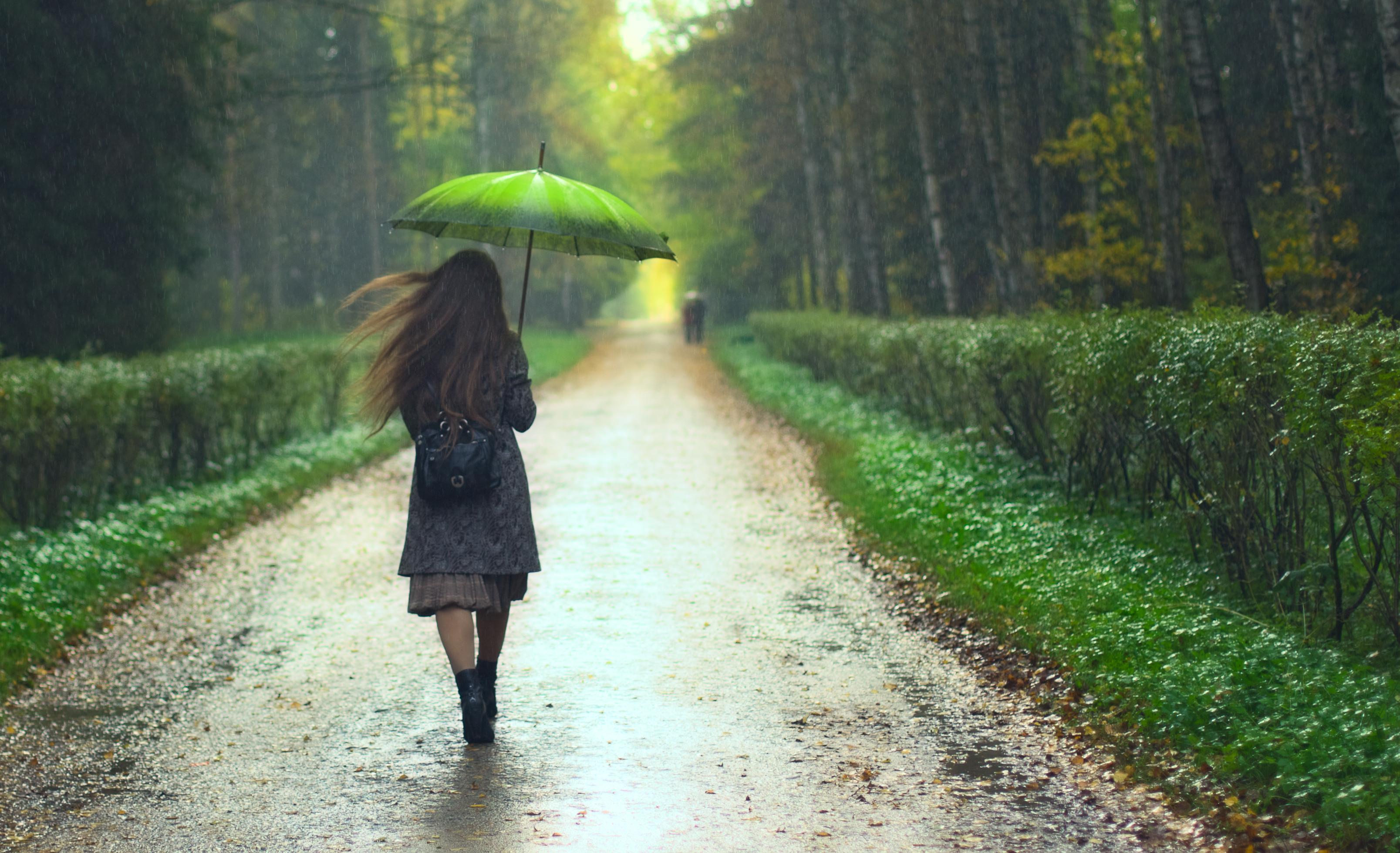 Control The Rain This Summer At MoMA