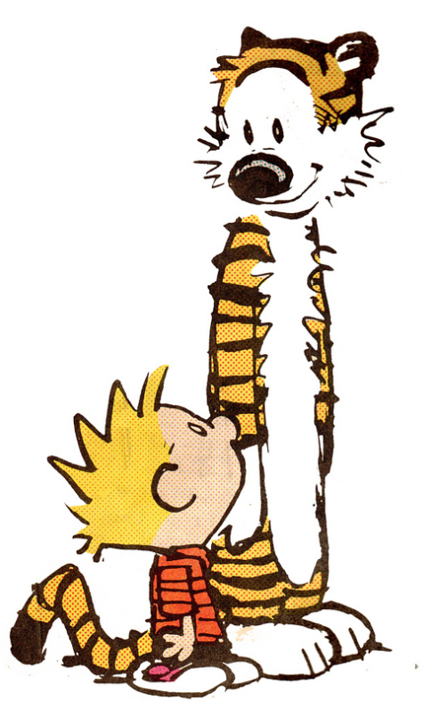 calvin and hobbies, an iconic comic pair