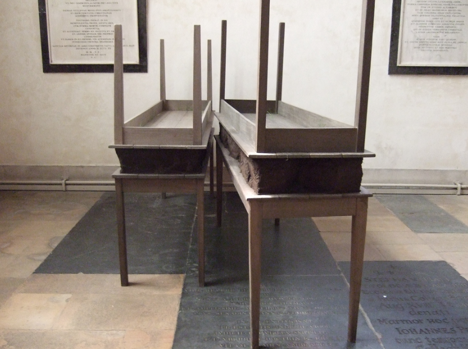 Coming Soon to the Guggenheim: Doris Salcedo