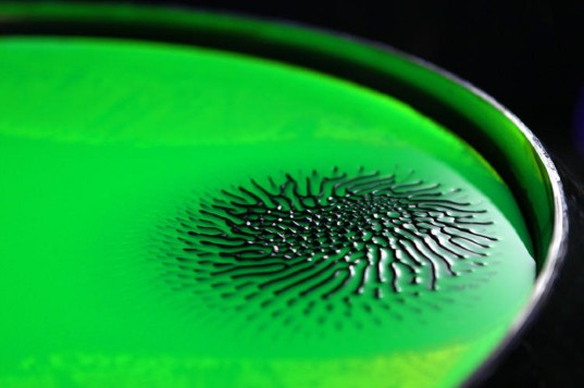 Mind-Reading Goo Turns Thoughts into Art