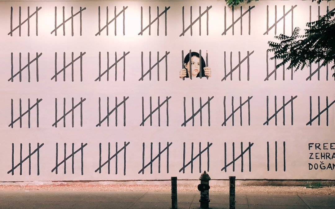 Political Artist Zehra Doğan Released From Prison